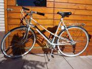 Nostalgie Rad Fahrrad Pegasus Carats