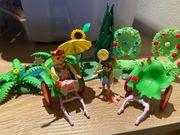 Playmobil Feenwelt