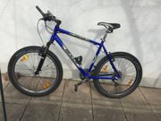 Bulls Comp 4 50 Mountain-Bike