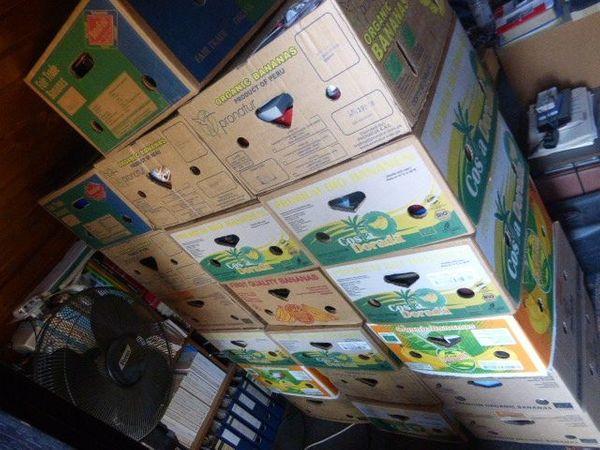 42 Bananenkisten Flohmarktkisten Flohmarkt Artikel