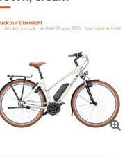 E Bike Riese und Müller