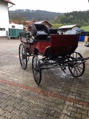 Kutsche Wagonett für Großpferde