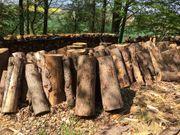 Brennholz Zum Selbermachen Fichte 25EUR