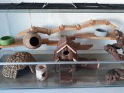 großer Nagerkäfig Mäusekäfig aus Glas