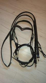 Kombiniertes Leder-Reithalfter schwarz mit Strass