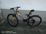 Scott Jugendbike