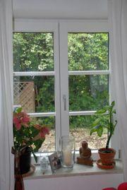 2x Holz-Alu Fenster und eine