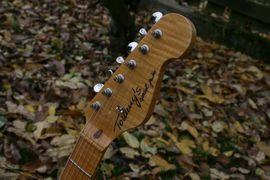 Tommy s Special Guitar Stratocaster: Kleinanzeigen aus Lübeck St. Gertrud - Rubrik Gitarren/-zubehör