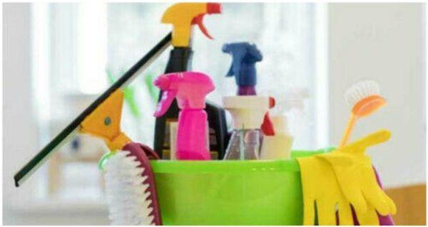 Putzfee Putzfrau Haushaltshilfe gesucht