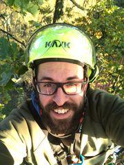 Totholzentfernung mit Seilklettertechnik vom Baumpflege-Kletterprofi