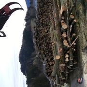 Verkaufe Buchen Brennholz