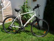 Fahrrad Herren Tecno-Bike