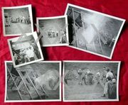 Konvolut von 6 alten Fotos