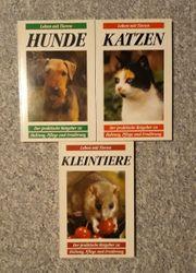 Katzen Hunde Kleintiere - Leben mit