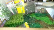 Für Bastler oder Krippenbauer Grün
