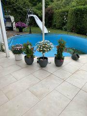 Schwimmbadzubehör Wasserrutsche inkl Pool Schwimmbad