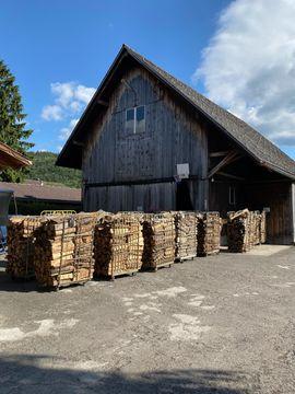 Rollbehälter: Kleinanzeigen aus Sennwald - Rubrik Sonstiges für den Garten, Balkon, Terrasse