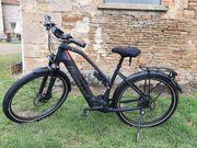 E-Bike Diamant Zouma Deluxe 2020