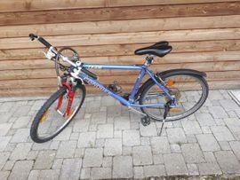 fahrrad 24 in Hard Sport & Fitness Sportartikel