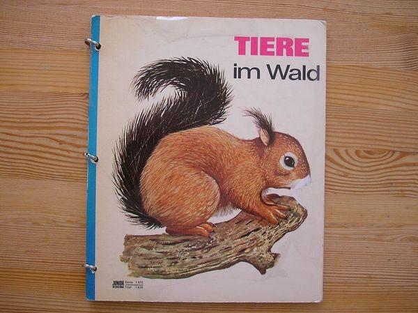 Altes Kinderbuch Tiere im Wald