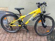 Fahrrad Bocas Digger 240