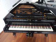 Flügel inklusive Pianobank