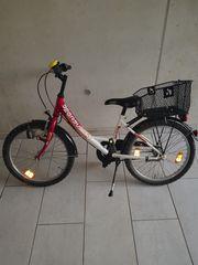 Kinder Fahrrad Pegasus 20 Zoll