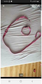 Schöne 2m Leine Halsband in