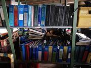 Ca 150 Original Peugeot Werkstatthandbücher