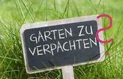 Suche Garten zur Pacht oder