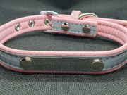 Designer Hundehalsband in Rosa NEU