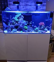 Red Sea Reefer 350 l DELUXE