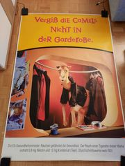 Werbeplakat Camel - Original City-Light-Poster