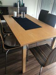 Tolle Chippendale Essgruppe, Esstisch, Tisch, Stühle Samt
