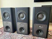 Schwarzweiß-Lautsprecher 8 4 LCRS Custom