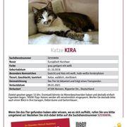 Kira wird in Ramsen vermisst