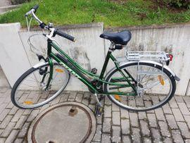 Damen-Fahrräder - Damenrad 28 Zoll Giant