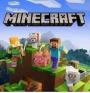 Minecraft Accounts