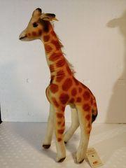Verkaufe Steiff Tier Giraffe Linda