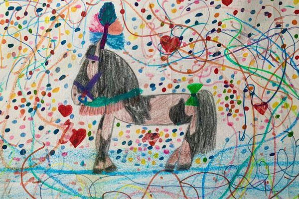 Pferd sucht Reiter ab Januar