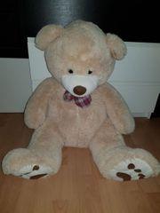 Knuddeliger großer Teddy sucht neues