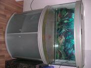 Aquarium ca 240l mit Unterschrank