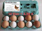 Täglich frische Eier aus Zweibrücken