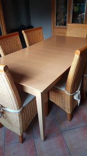 Esstisch mit 6 Rattanstühlen