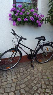 Damen Trekkingrad schwarz fast neu