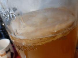 Gesunde Getränk selbst machen. kombucha teepilz.