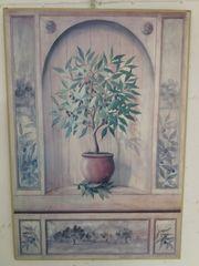 Bild Kleiner Olivenbaum in Nische