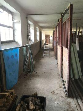 Büros, Gewerbeflächen - Stall in Bestlage