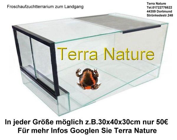 Aufzuchtterrarium Dendrobaten- oder Froschterrarien