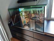Aquarium 110x50x60cm Glasbecken Terrarium Kleintierkäfig